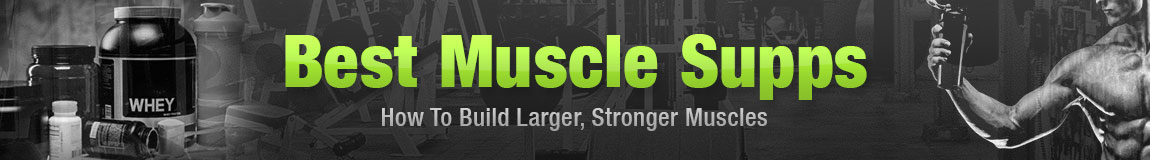 Best Muscle Supplements