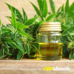 cbd muscle recovery oil